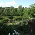 GartenHelene